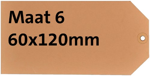 LABEL HF2 NR6 60X120MM KARTON 200GR CHAMOIS 1000 Stuk